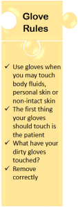 glove rules