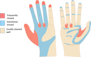 handwashing missed areas
